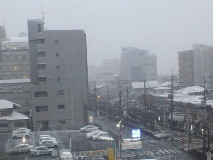120229_雪