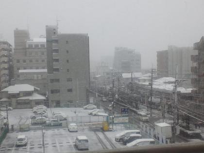 120229_積雪