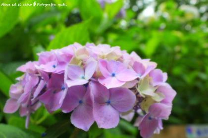 17_20120309220625.jpg