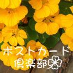 ポストカード倶楽部 ロゴ