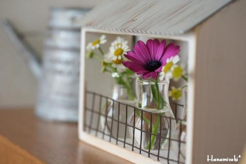 お花ハウスw