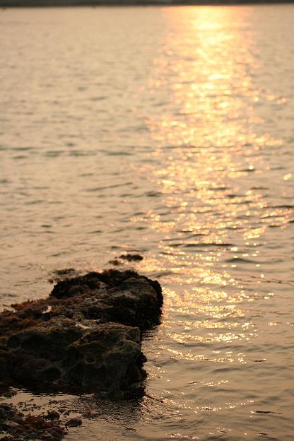 夕暮れの海♪