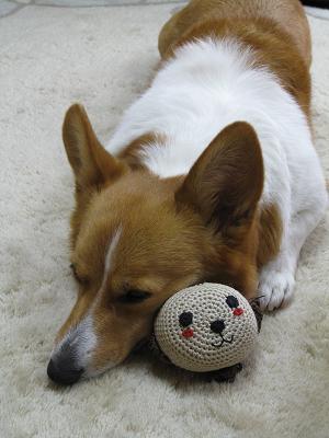 ボールと寝る3.7