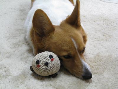 ボールと寝る②3.7