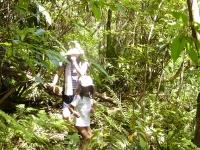 6歳には背丈のジャングル