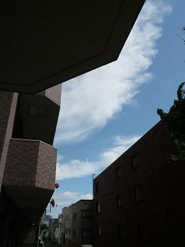 さわやか・・・北海道の夏