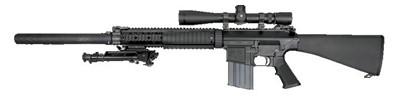 ナイツ SR-25 (M110)