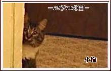エツコ小梅小