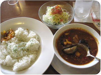 インド風野菜たっぷりチキンカレー