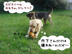 Yebisu&Sandy1