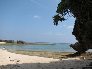 徳之島リゾート&オフィス2
