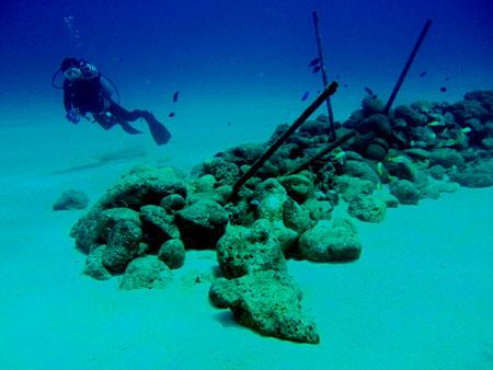 ラウラウビーチ魚礁