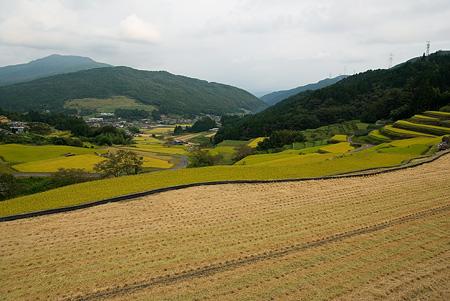 坂折棚田-2