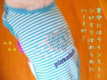 s-P1190211.jpg