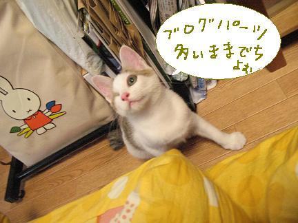 ブログパーツ好きなんだも?ん。梅のイジワルゥ(;ωq`)