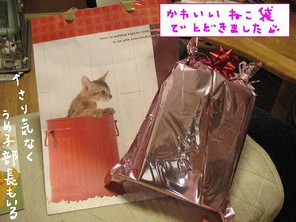 猫の紙袋が猫好きの心を揺さぶる??(* ゚д゚ *)